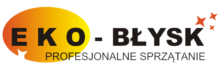logo eko błysk